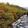 色づきはじめた竜頭の滝