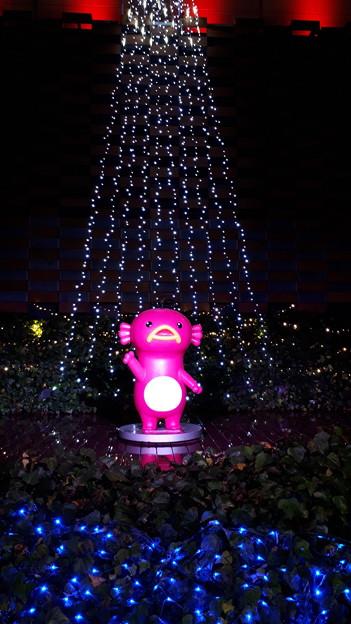 2018.12.21(大阪光の饗宴/ABCリバーデッキ/エビシー キラキラ クリスマス2)