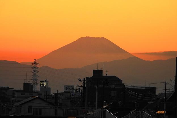 210120_50Y_夕景・RX10M3(鶴見川) (113)