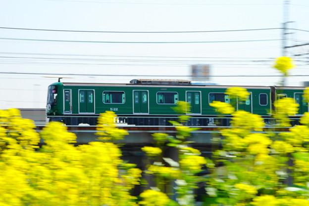 200319_52D_東急線の流し撮り・RX10M3(鶴見川) (110)