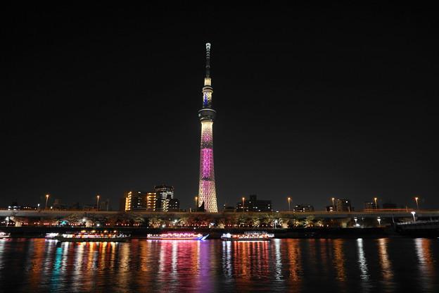 190326_95S_夜のスカイツリー・S1650(隅田川) (27)