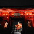 Photos: 190325_81S_境内の様子・RX100M4(浅草寺) (8)