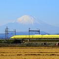 191216_L02_ドクターイエローと富士山・S18200 (13-2)