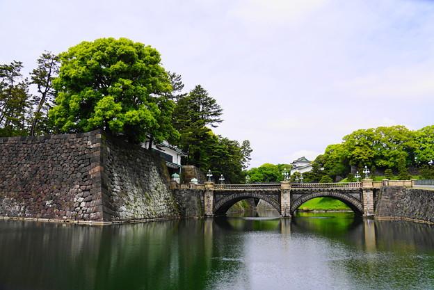 Photos: 190501_03K_二重橋・S18200(皇居) (40)