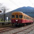Photos: 160329_37_列車(家山駅) (1)