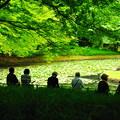 Photos: 190605_39T_庭園の様子・S18200(小石川後楽園) (48)