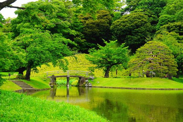 190605_39T_庭園の様子・S18200(小石川後楽園) (49)
