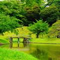 Photos: 190605_39T_庭園の様子・S18200(小石川後楽園) (49)