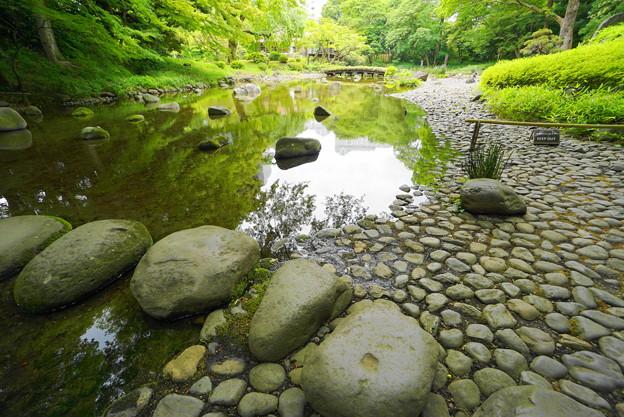 190605_04T_庭園の様子・S1018(小石川後楽園) (29)