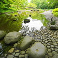 Photos: 190605_04T_庭園の様子・S1018(小石川後楽園) (29)