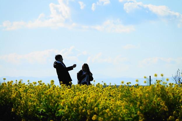 210102_25N_菜の花畑で・RX10M3(ソレイユの丘) (79)