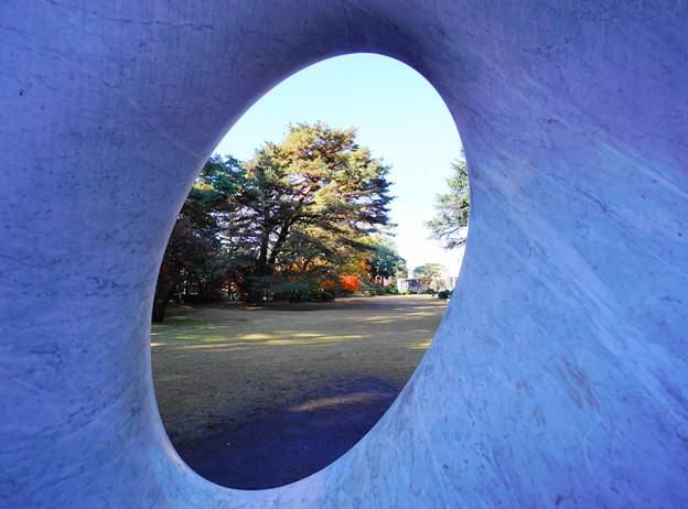 191212_α12_芝庭園の様子・S1018(庭園美術館) (3)
