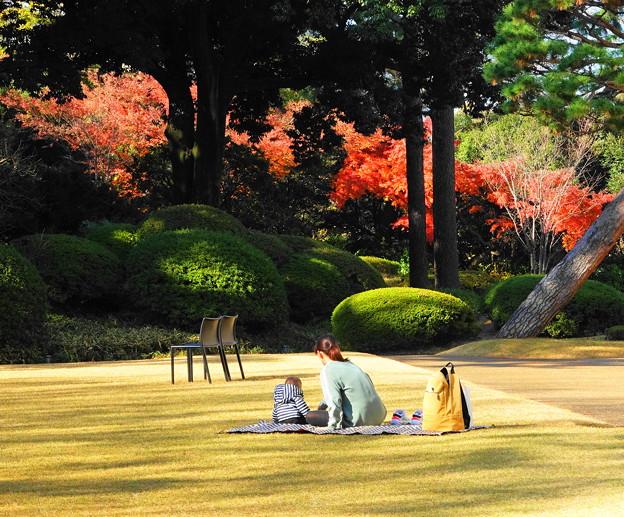 191212_R01_庭園にて・RX10M3(庭園美術館) (2)