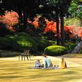 Photos: 191212_R01_庭園にて・RX10M3(庭園美術館) (2)