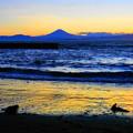 Photos: 190616_57F_富士山・日没後・S18200(江の島) (40)