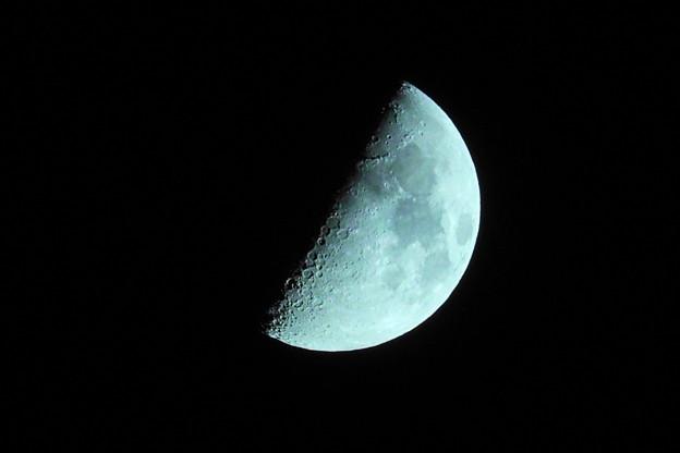 210717_51T_上弦の月・RX10M3(近隣) (15)