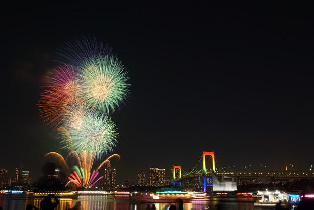 Photos: 191214_α51_花火・S1655G(お台場) (1)