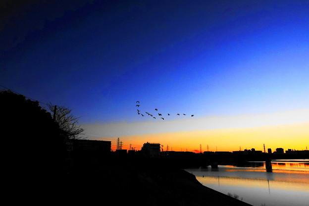 201220_21A_夜明けの川・RX10M3(鶴見川) (28-H)