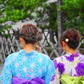 Photos: 190709_91_後ろ姿・浴衣美女?・S18200(鶴岡八幡宮) (5)