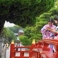 Photos: 190709_34T_境内の様子・S18200(鶴岡八幡宮) (34)