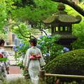 Photos: 190709_25Y_浴衣の二人・S18200(妙本寺) (16)