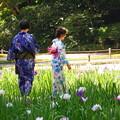 Photos: 180607_N02_花菖蒲を・S18200・α60(明月院) (14)