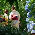 Photos: 180607_N01_紫陽花とともに・S18200・α60(明月院) (40)