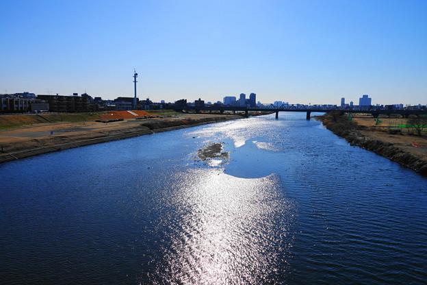 210204_02K_川の様子・RX10M3(多摩川) (4)