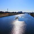 Photos: 210204_02K_川の様子・RX10M3(多摩川) (4)