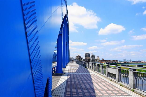210601_14M_丸子橋・RX10M3(多摩川) (2)