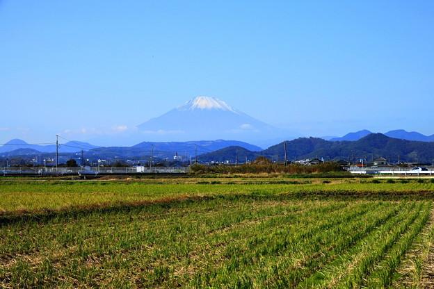 Photos: 191121_R02_富士山・RX10M3(平塚) (9)