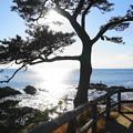 Photos: 190103_53_風光明媚な海岸・S18200(秋谷海岸) (16)