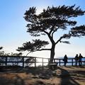 Photos: 190103_53_風光明媚な海岸・S18200(秋谷海岸) (7)