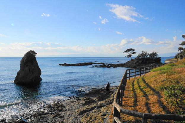 190103_53_風光明媚な海岸・S18200(秋谷海岸) (42)