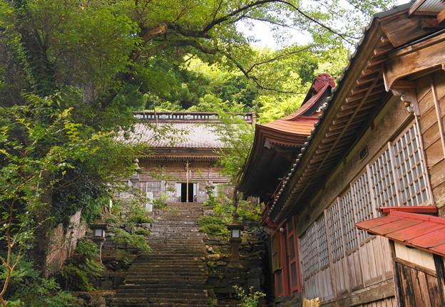 170813_s21_長谷寺の様子・SH(畑野・小佐渡) (19-2) (5)