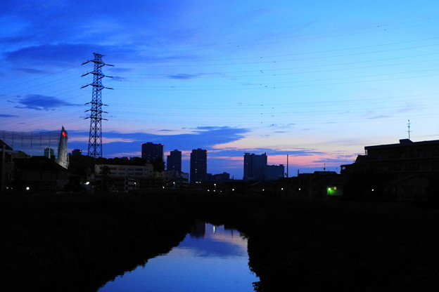 210809_01A_朝景・RX10M3(矢上川) (2)