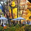 191212_R12_西洋庭園・RX10M3(庭園美術館) (7)