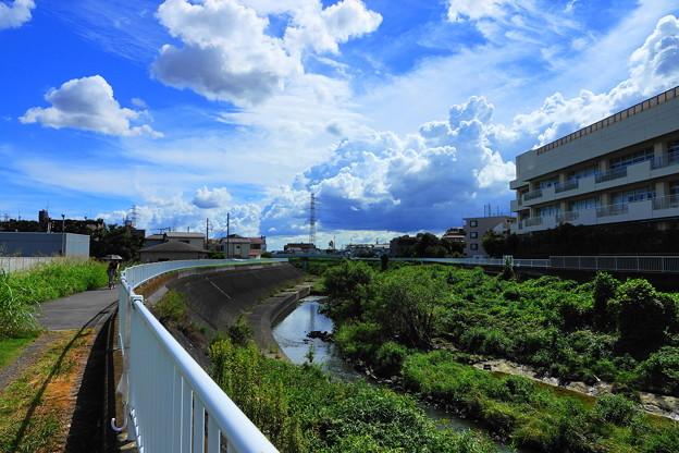 200827_04S_空と雲・RX10M3(矢上川) (30)