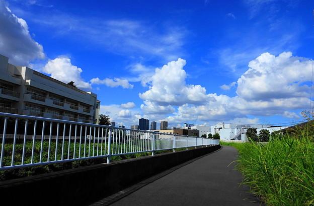 200827_04S_空と雲・RX10M3(矢上川) (55)