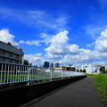 Photos: 200827_04S_空と雲・RX10M3(矢上川) (55)