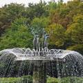 Photos: 181016_27_公園の様子・S18200・α60(昭和記念) (5)
