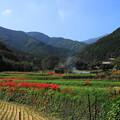 Photos: 191002_S01_里山にたなびく・RX100M3(日向薬師) (4)