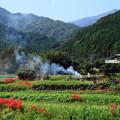 Photos: 191002_S01_里山にたなびく・RX100M3(日向薬師) (6)