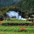 Photos: 191002_S01_里山にたなびく・RX100M3(日向薬師) (1)