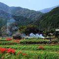 Photos: 191002_S01_里山にたなびく・RX100M3(日向薬師) (2)