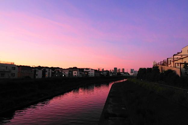 Photos: 210919_64Y_夕景・RX10M3(矢上川) (7)