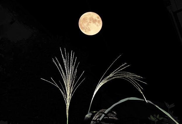 210921_合成_十五夜の月・RX10M3(近隣) (G-E)