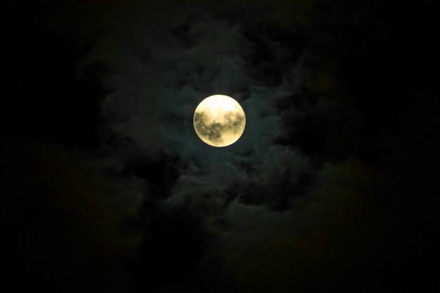210921_62T_十五夜の月・RX10M3(近隣) (3)