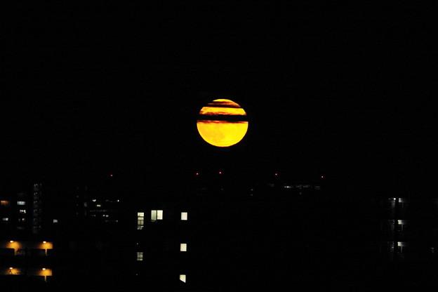 210921_51T_十五夜の月・RX10M3(鶴見川) (25)