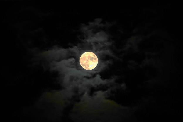 Photos: 210921_62T_十五夜の月・RX10M3(近隣) (8)